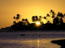 Palms and ocean at sunset in Hawaii Stock Photography