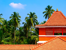 Palms and orange tiled house. Tropical view of orange tiled house with palms as background Stock Image
