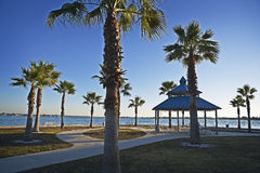 Palms & Pavillion, Gulf Coast Royalty Free Stock Photography