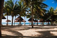 Palms, peace and sandy beach Stock Photos