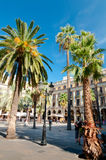 Palms in Plaza Reial at Barcelona Stock Image