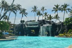 Palms & Pool In Hawaii Royalty Free Stock Image