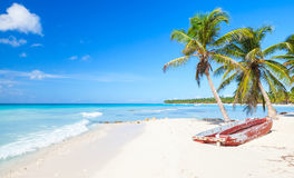 Palms and red pleasure boat, Saona beach Stock Photography