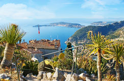 The palms on rocks of Eze Royalty Free Stock Images