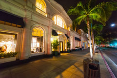 Palms in Rodeo Drive at night Stock Image