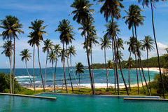 Palms and sandy beach Stock Photos