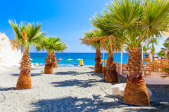 Palms, sea and a beautiful beach near Governors beach, Cyprus. Stock Photography
