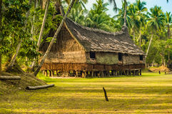 Palms and straw house Royalty Free Stock Images