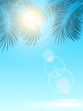Palms and sun on blue background Stock Photography