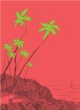 Palms and sun, tropical Goa, India Stock Photography