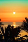 Palms and sunrise over sea Stock Photo