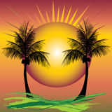 Palms sunset Stock Image