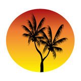 Palms in sunset circle Stock Photography