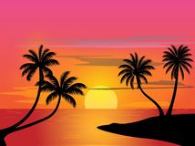 Palms in sunset. A silhouette scenic view of beach in sunset with some palms royalty free stock photography