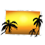 Palms and sunset vector background for text, tourism, leisure, s Stock Photo