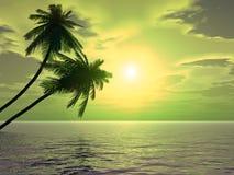 Palms_sunset2_A ilustração royalty free