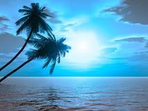 Palms_sunset2_AB Stock Afbeeldingen