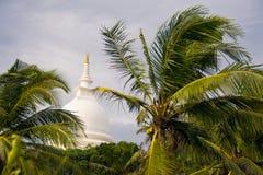 Palms tree, Japanese peace pagoda on background Royalty Free Stock Image