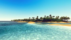 Palms on the tropical beach 3d rendering. Palm trees and tropical beach stock footage