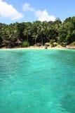Palms on tropical coastline on caribbean sea Royalty Free Stock Photography