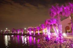 Palms under purple light. Outdoor entertainment venue at night with palms under purple light Royalty Free Stock Photography
