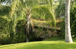 The Palms at Vidanta Riviera Maya Stock Photography