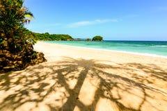 Palmschaduw op een strand stock afbeelding