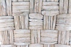 Palmschors Stock Afbeelding