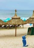 Palmschuilplaatsen bij het Strand van China in Da Nang Royalty-vrije Stock Afbeeldingen