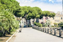Palmsteeg dichtbij beroemd oriëntatiepunt Castello Ursino, oud kasteel in Catanië, Sicilië, Zuidelijk Italië stock afbeelding