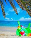 Palmtakken en strandrackets Stock Fotografie