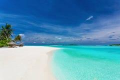 Palmträd över att bedöva lagun och den vita sandiga stranden Arkivfoton