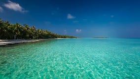 Palmträd över den tropiska lagun med den vita stranden arkivfilmer