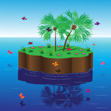 Palmträd. Arkivfoton