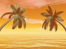 Palmträd - 3D framför vektor illustrationer