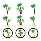 Palmträd färgrika symboler för exotiska ferier Arkivfoto