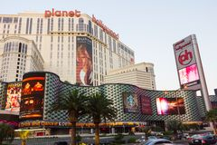 Palmträd framme av det berömda hotellet i Las Vegas Royaltyfri Fotografi