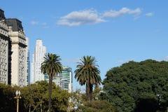 Palmträd i bakgrunden av skyskrapor Arkivfoto