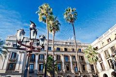 Palmträd i Barcelona Royaltyfria Bilder