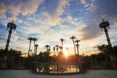 Palmträd i solnedgången i Maria Luisa parkerar i Seville, Spanien arkivbild