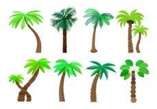 Palmträd i tecknad filmstiluppsättning på en vit bakgrundsvektorillustration Arkivbilder