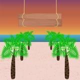 Palmträd med bräden Royaltyfri Foto