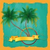 Palmträd med en textram Fotografering för Bildbyråer