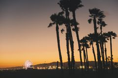 Palmträd med Santa Monica Pier på solnedgången arkivfoton