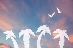 palmträd mot tropisk solnedgånghimmel arkivfoton