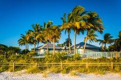 Palmträd och byggnad på stranden i fortet Myers Beach som är en smula överlastad Arkivfoto