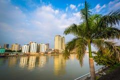 Palmträd och byggnader längs den Pasig floden som ses från fort Sa Royaltyfria Bilder