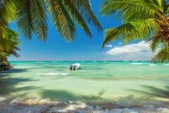 Palmträd och ett fartyg på den lyxiga exotiska carribean stranden Arkivbild