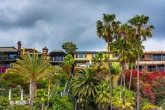 Palmträd och hus på klippor ovanför den huvudsakliga stranden Arkivfoto