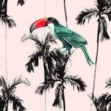 Palmträd och sömlös bakgrund för tukan vektor illustrationer